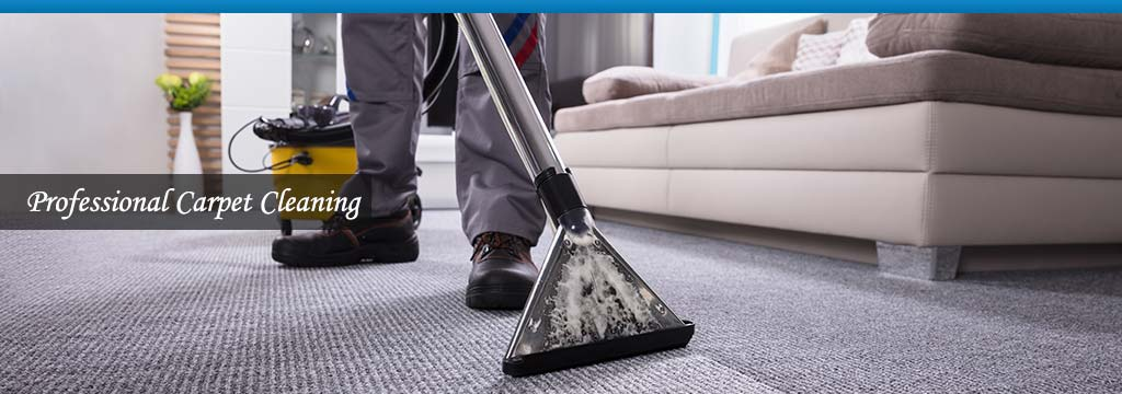 professional carpet cleaner at work